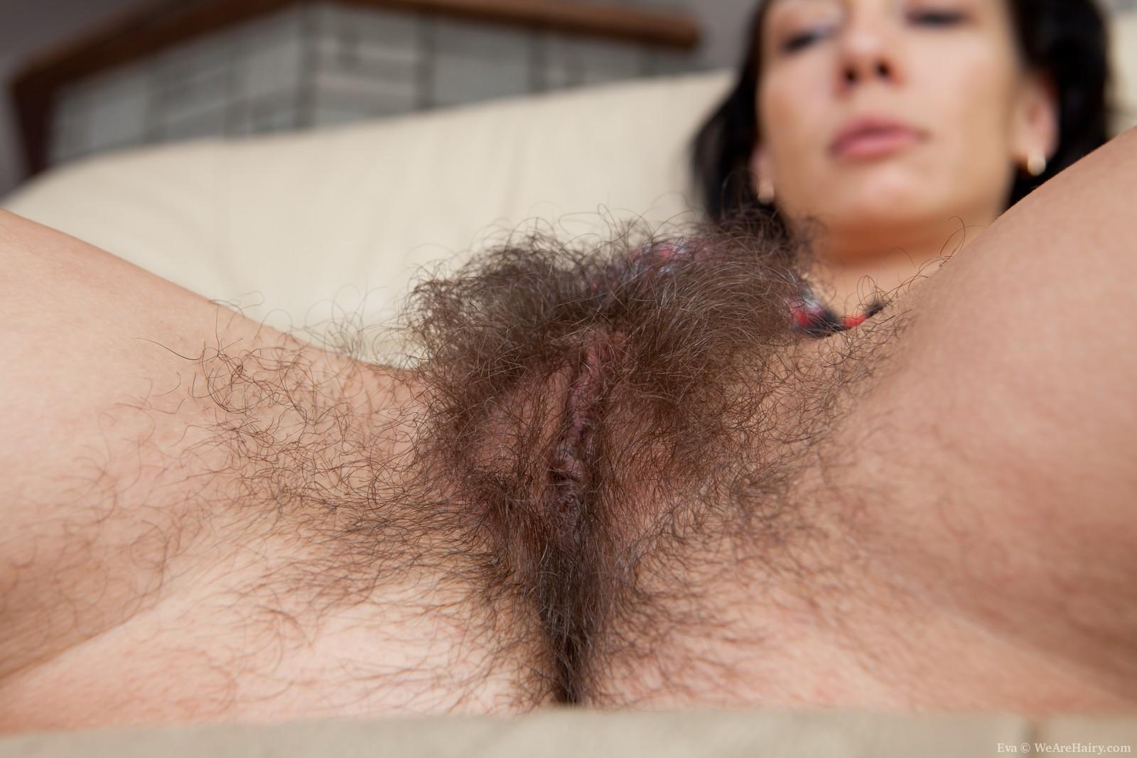 Секс с зарослими 16 фотография
