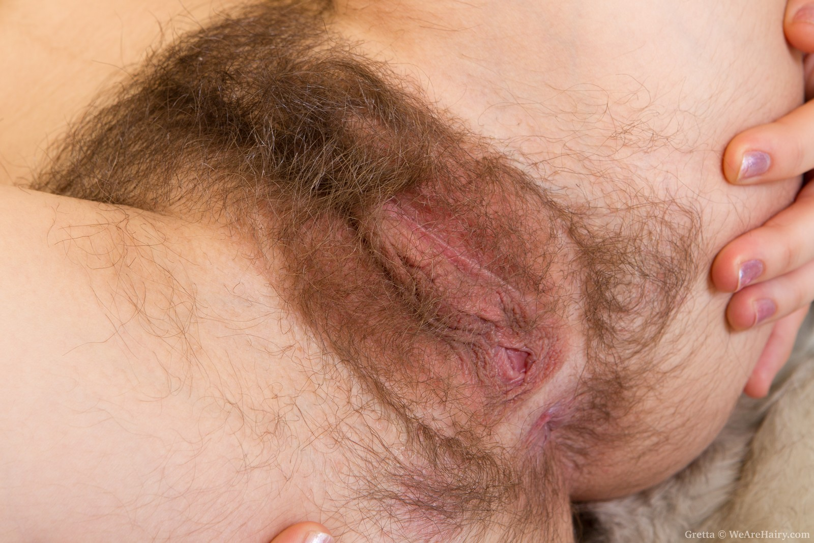 sex offender paroled to michgan