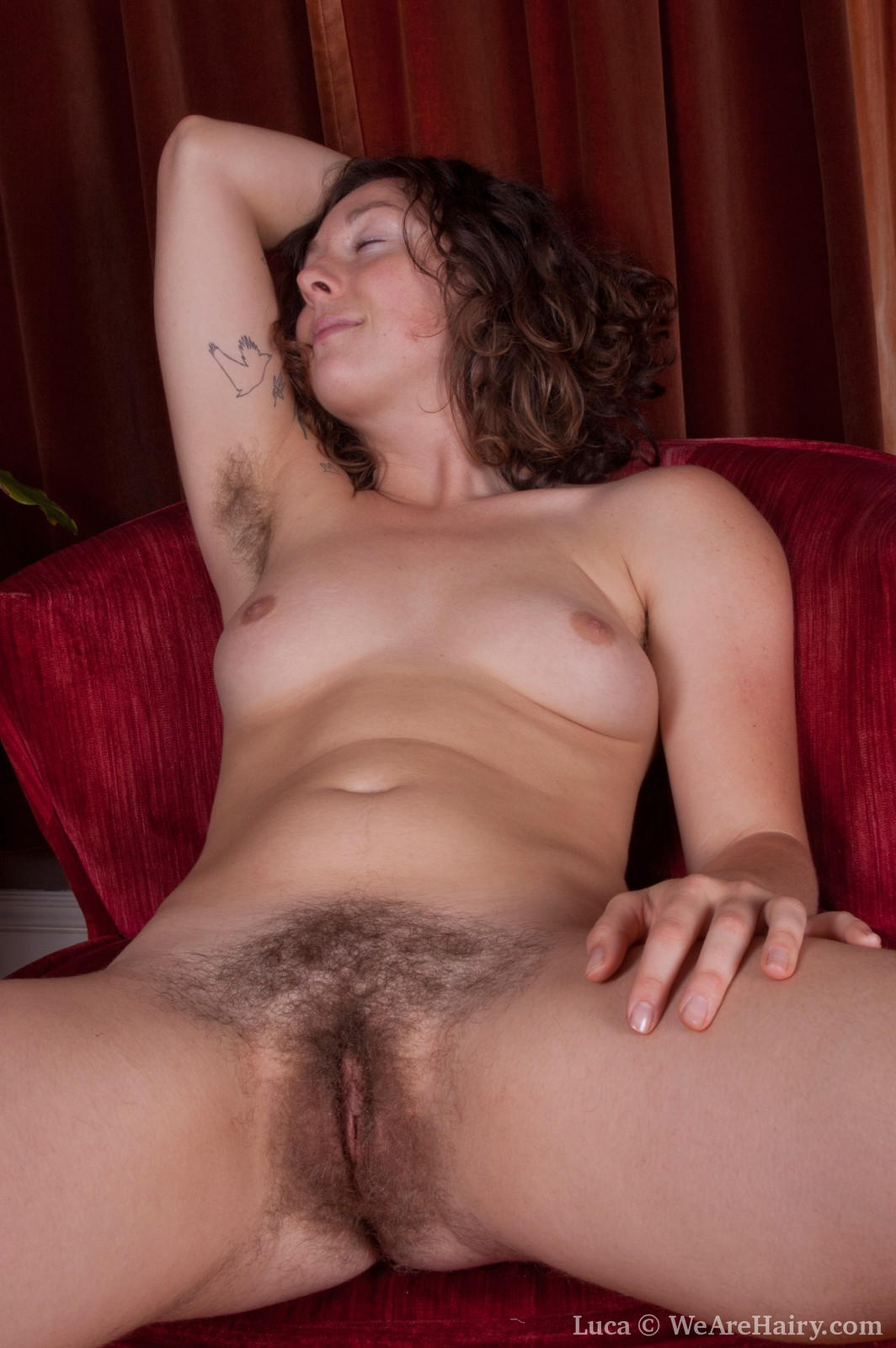 Hairy female escorts hairy female escorts psoztw hot porn ~ hairy female escorts psoztw xxx movies -