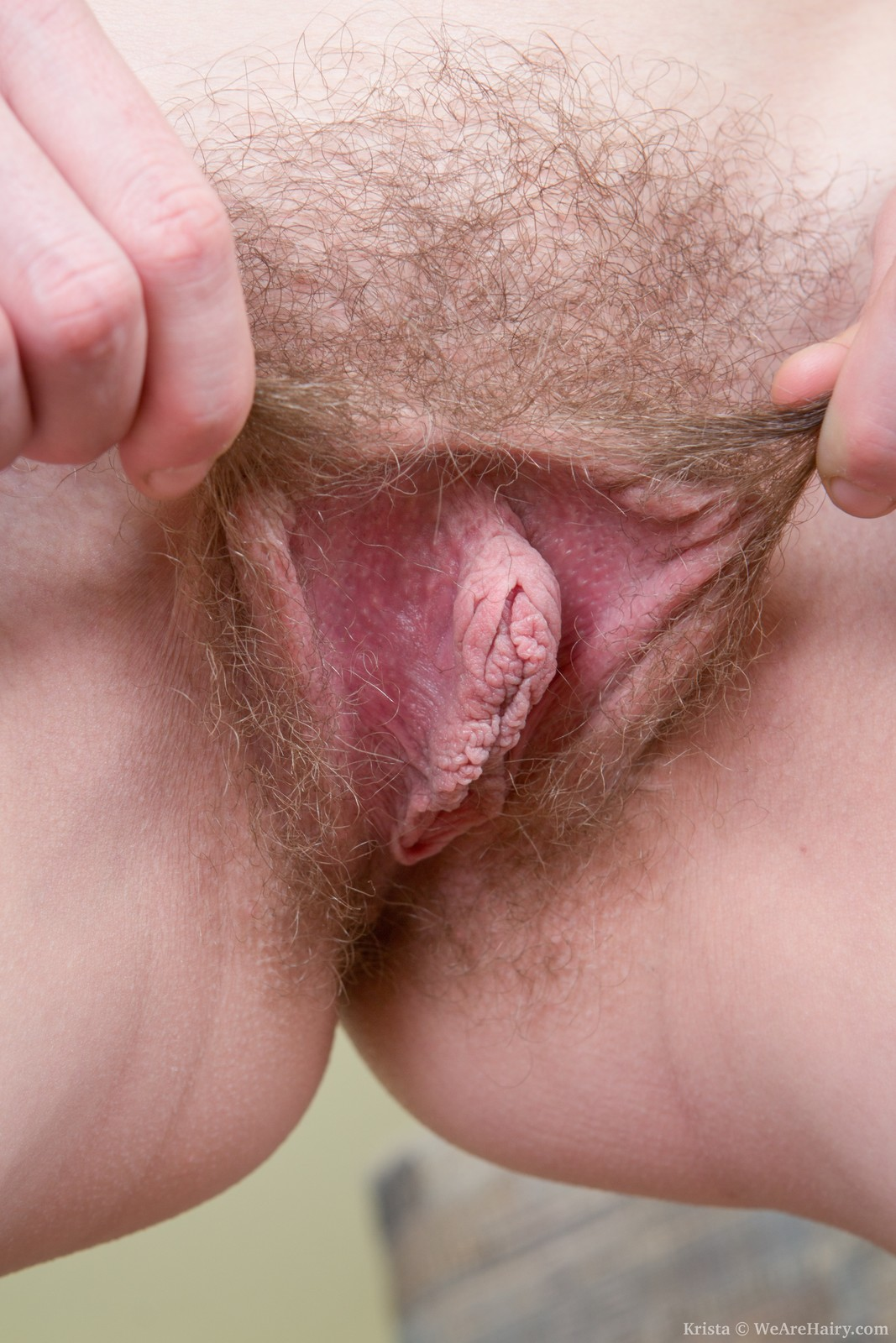 hairy pussy long clips