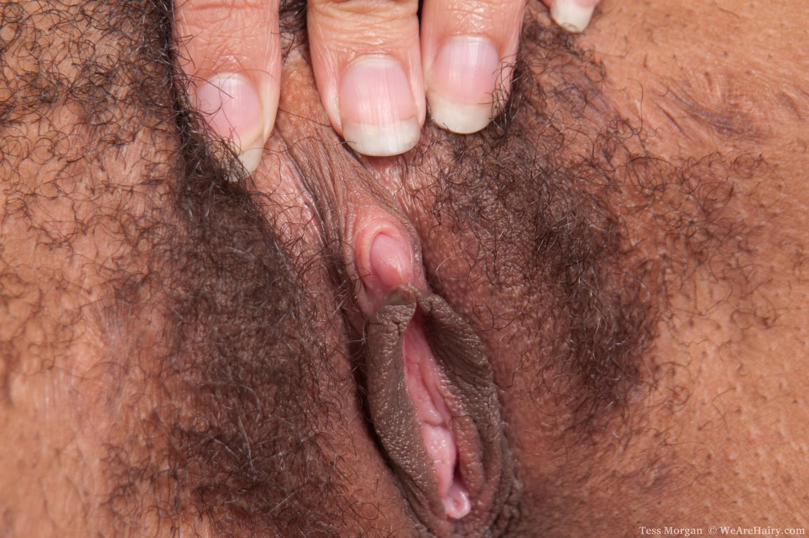 finnish hairy pussy seksitreffit